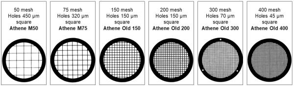 ATHENE-Netzchen, Typ: Old