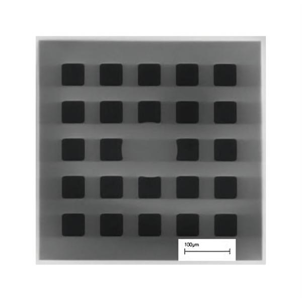 Pelco® Siliziumdioxid-Membran