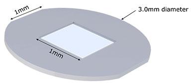 Pelco® Siliziumnitrid-Membranen für die korrelativer Licht- und Elektronenmikroskopie (CLEM)