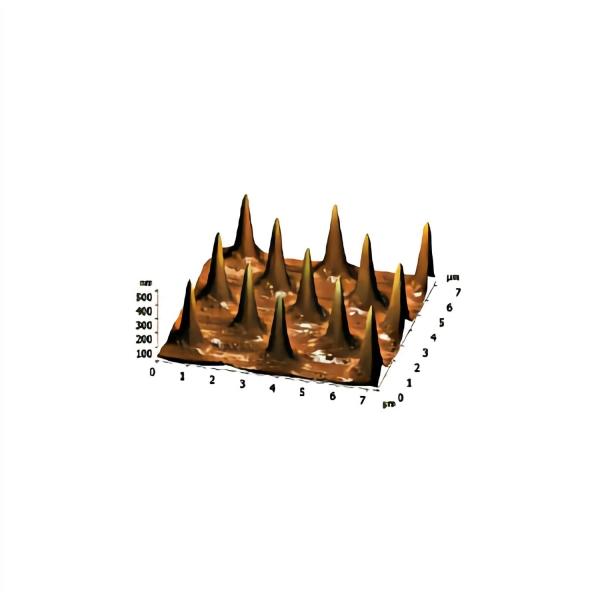 3-D Test-Raster für Spitzenschärfe TGTZ-400 (montiert auf AFM-Scheibe)